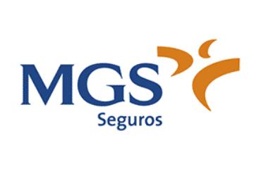 Ciberseguro MGS